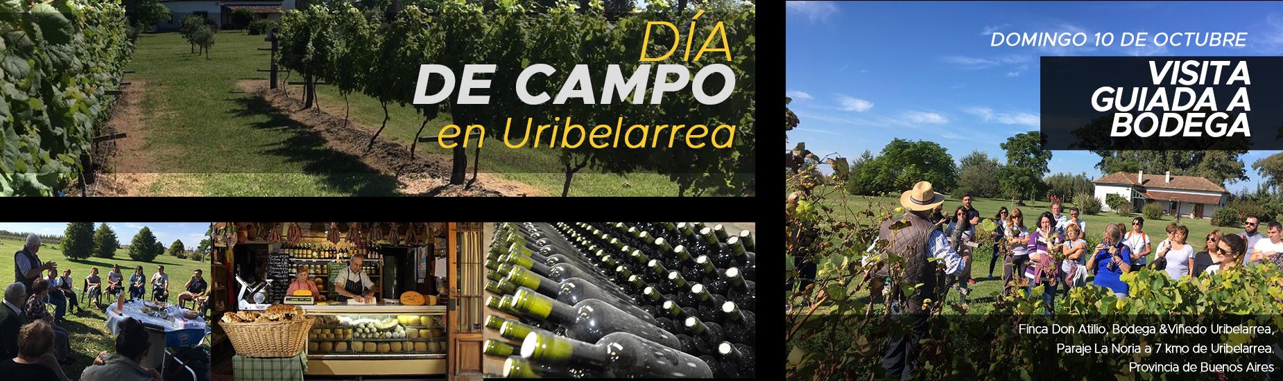 Dia de Campo Ubilarrea